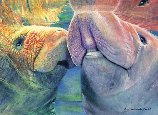 Marine Wildlife Art  Paintings For Sale / Colleen Nash Becht