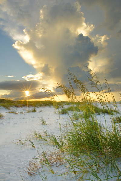 Florida's Okaloosa Island Photographs - Fine Art Prints on Canvas, Paper, Metal, & More | Waldorff Photography