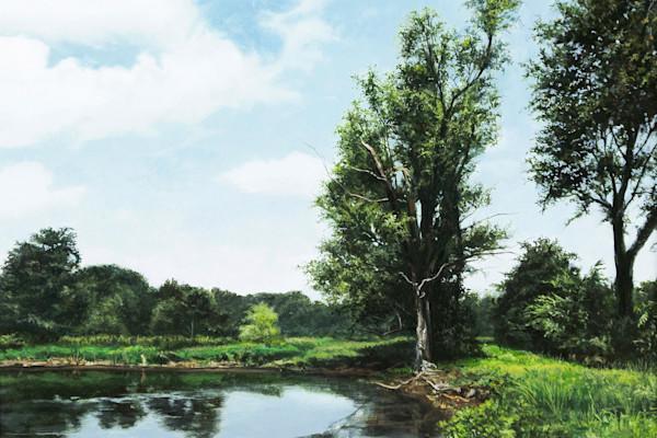 Midwestern Pond art print | Kevin Grass Fine Art