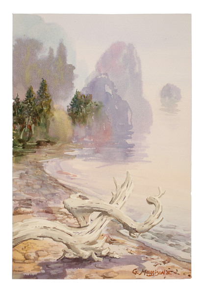 Olympic Shore | Zen Landscapes | Gordon Meggison IV