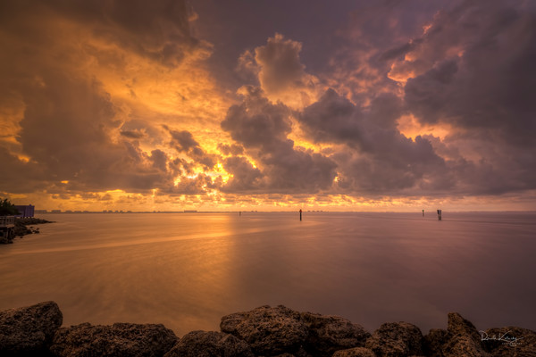 Sarasota Golden Purple Hour Photographic Art