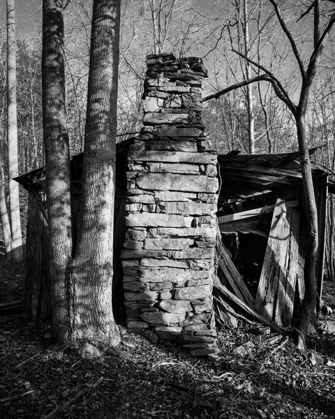 Chimney In Woods