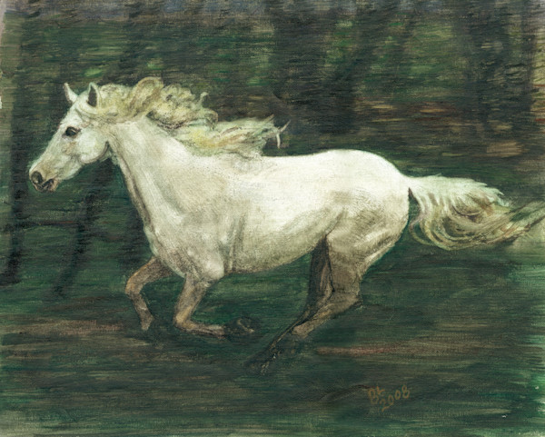 Horse Galloping By