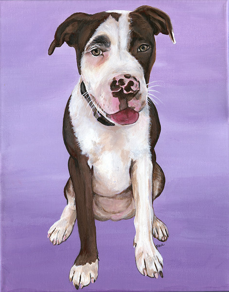 Loving memorial of Shelby - Acrylic Pet Portrait