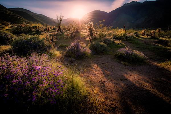 Natural Landscape Photographs For Sale as Fine Art