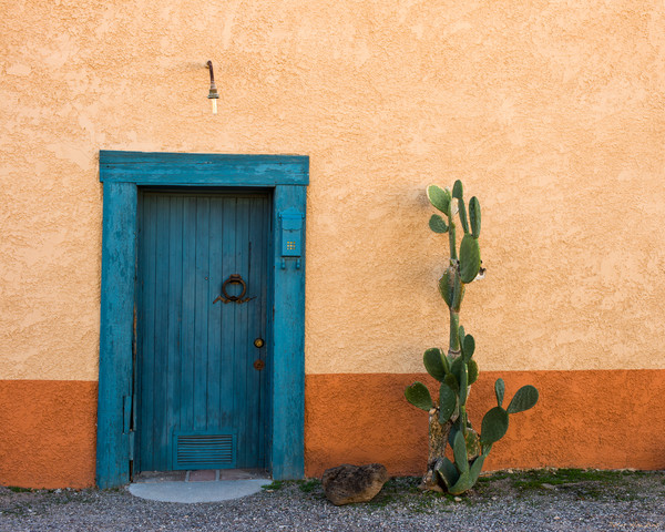 door & cactus, doors, tucson, arizona, bario