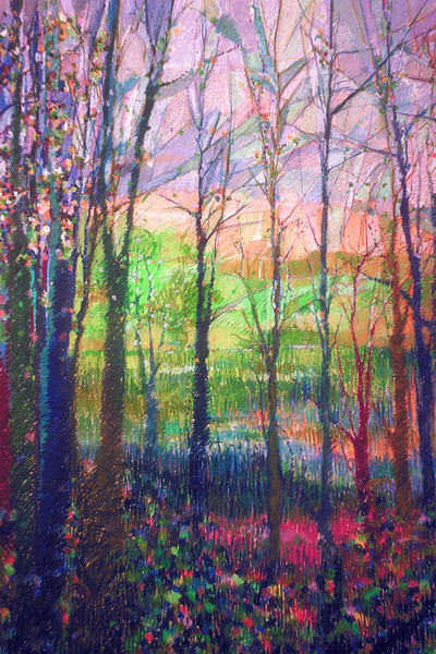 Visions of Peace Art Collection Dorothy Fagan