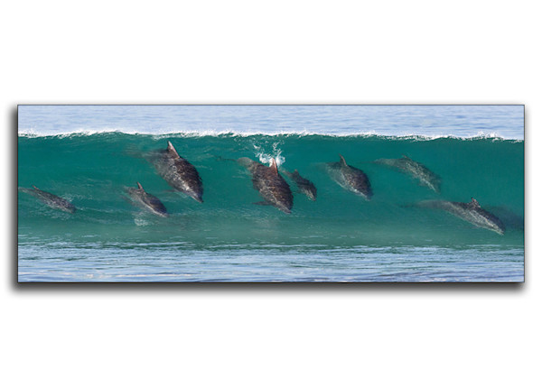Family Surf Lesson Metal Print