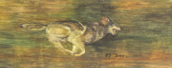 Wolf in Pursuit