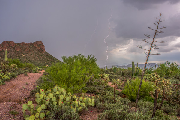 cat mountian, monsoon lightning, storm, tucson, arizona