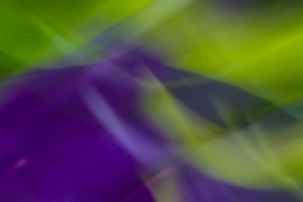 Natural Motion # 23 - Abstract Art Photographs for sale by Ron Pickering