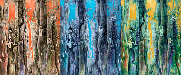 Gayle's Enchanted Forest is a magical interpretation of deep woods and the colorful sky that helps create very personal interpretations.