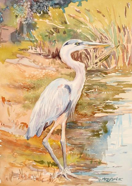 Blue Heron | Watercolor Landscapes | Gordon Meggison IV