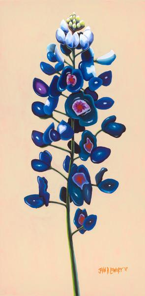 Original painting of a Texas bluebonnet flower for sale as art prints.