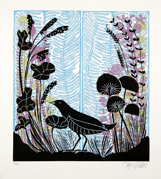 Birds and Countryside, original linocuts and etchings with birds, exotic birds and country side landscapes