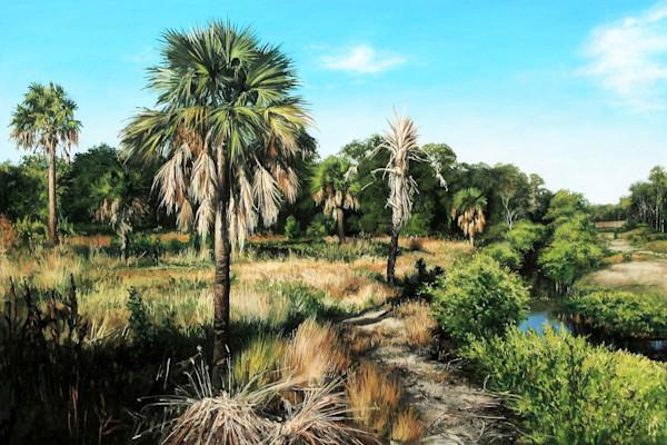 Lush mangrove Nature Trail print | Kevin Grass Fine Art
