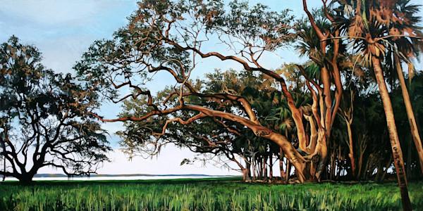 Riverside Oak sunset art print | Kevin Grass Fine Art