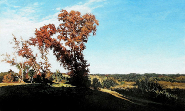 Tree in Grassy Pointe print | Kevin Grass Fine Art