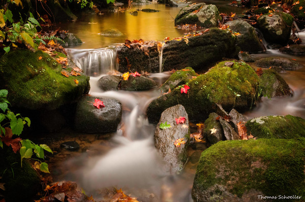 Pretty autumn foliage and a gentle cascading brook nature scene/ fine art photography prints of Connecticut's Litchfield Hills