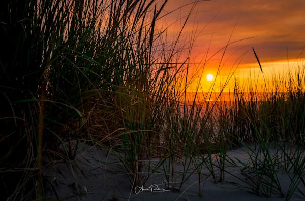 Sandy grass sunset