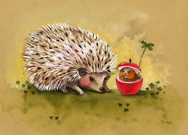 Hedgehog Clover Afternoon