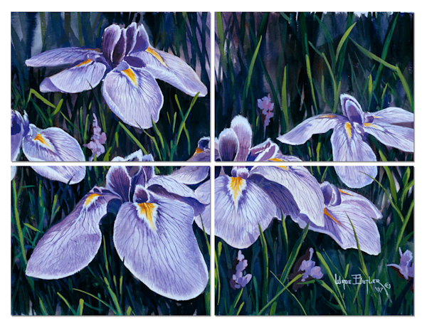 Purple Iris Art Wall