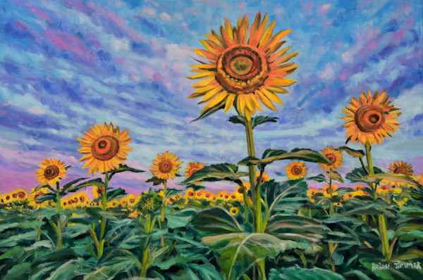 Rise and Shine Kansas Sunflower Oil Painting