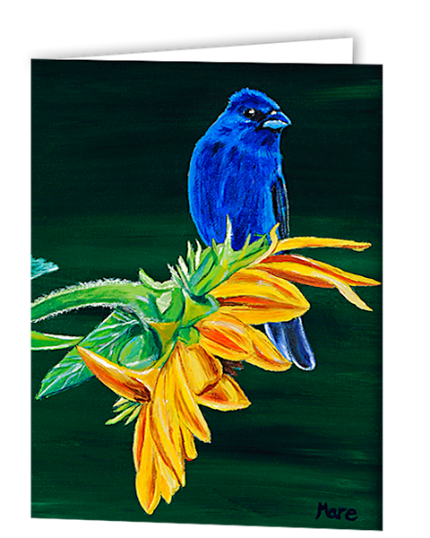 Greeting cards in an 8 pack set printed with original artwork of Indigo Bunting and Sunflower by Mary Anne Hjelmfelt.