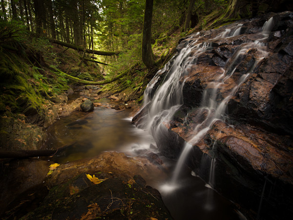 Cliff Gilker Park - Waterfalls and Stream