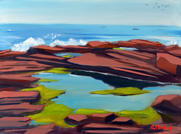 Tidal Pool in Cape Elizabeth painting by Paul William   Fine Art for Sale