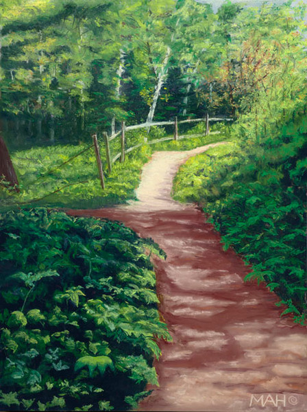 Whitefish dunes park trail print by Mary anne Hill