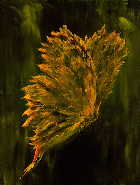 Butterfly abstract print by Cat A.