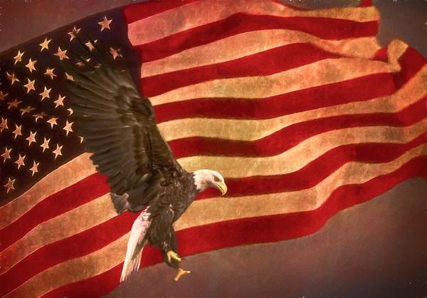 Art Photograph US Flag Bald Eagle In Flight fleblanc