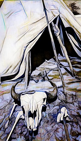Art Photograph Tipi and Bison Skull fleblanc