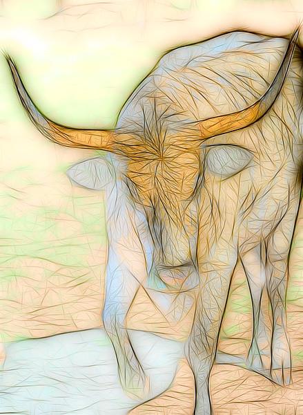 Art Photograph Texas Longhorn Challange v2 fleblanc