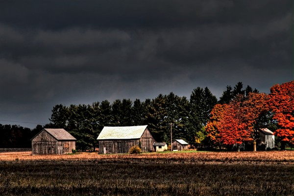 autumn, barns, landscapes, early-morning, northern-lower-michigan