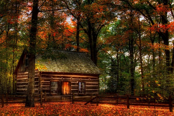 Log Cabin In Autumn Color