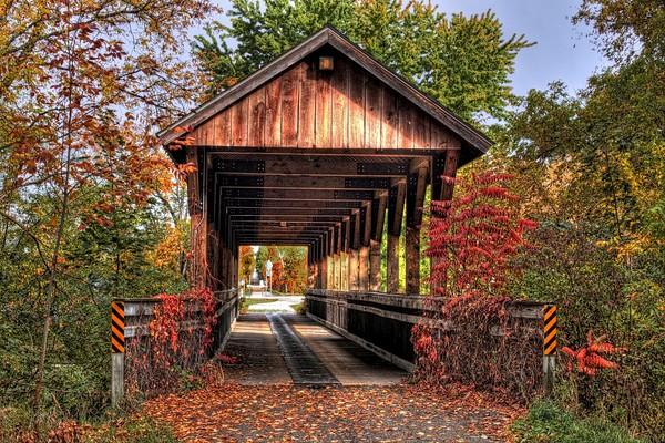 landscapes, bridges, covered-footbridge, reed-city, michigan
