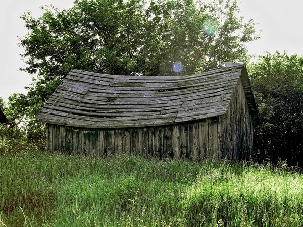 Sagging Roofed Old Shack