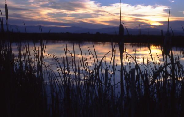 Ninepipes Reservoir, Montana