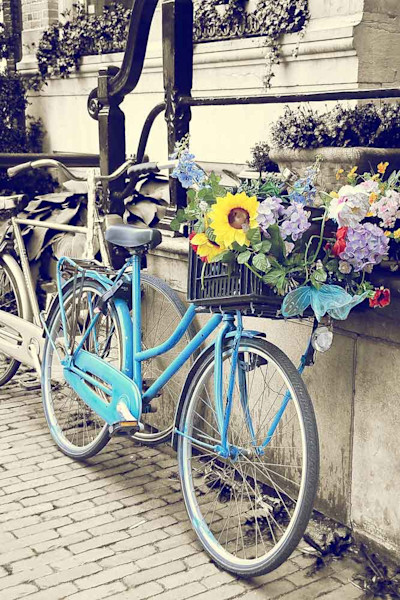 Blue bicycle with a wildflower basket in Amsterdam