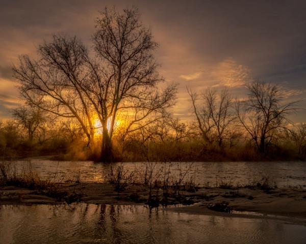 Sabino Creek Sunrise - Signed