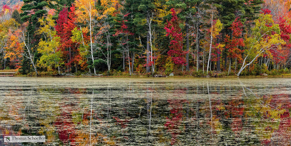 Leffert's Pond Vermont Fine Art nature prints/Vivid New England autumn foliage colors and amazing reflections