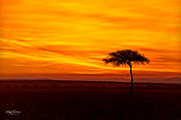 Kenya Sunset 3