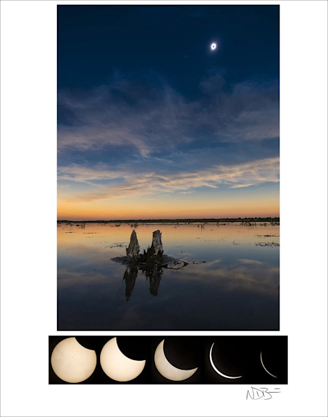 Eclipse 2017 Limited Edition Signed Print
