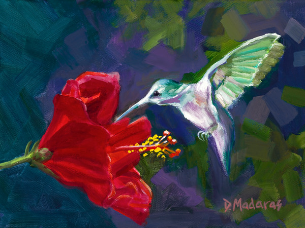 Wildlife Bird Print | Hummingbird & the Hibiscus | Madaras