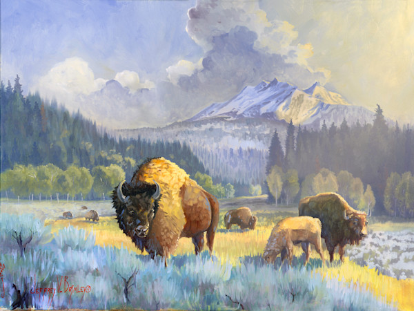 North American Bison and family prints