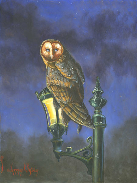 Barn Owl sitting perched on Light print