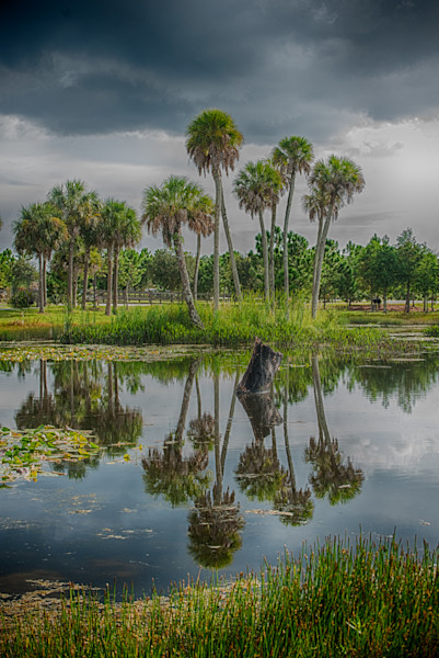 Old Florida Reflections