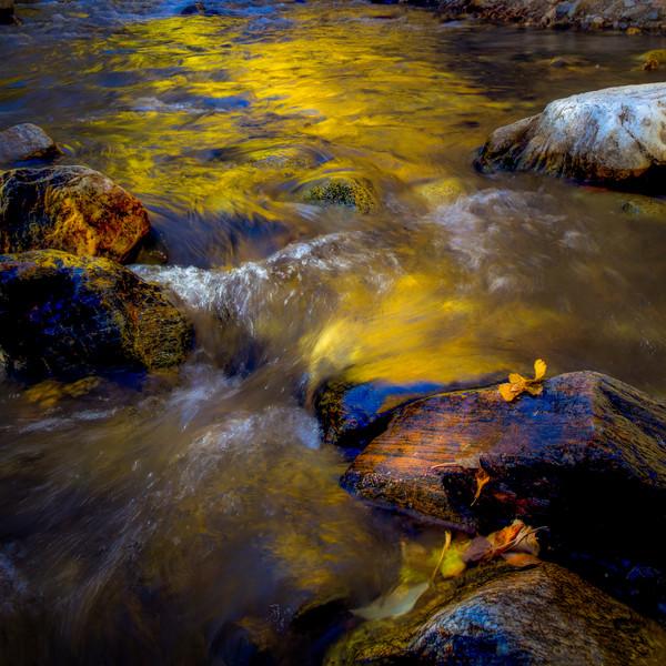 Liquid Gold Reflections